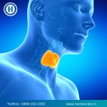 Does Thyroid Affect Men?